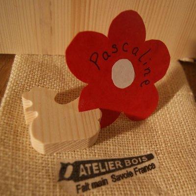 Marque place poule poulette en bois massif, réutilisable, à décorer, par 10, porte nom table de paques mariage theme  animaux de la ferme , basse cour fait main