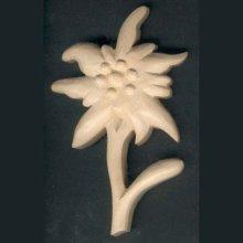 Edelweiss découpée sculptée cirée nature